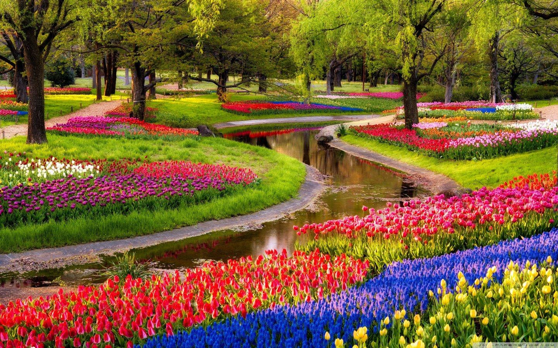 Весна... Подборка фото.  - Изображение 6