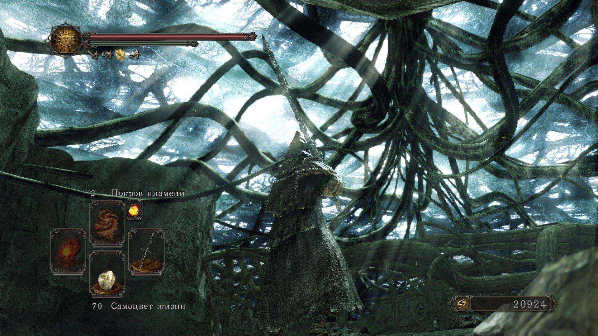 Вопль-прохождение Dark Souls 2 ... получилось много скриншотов -_- - Изображение 9