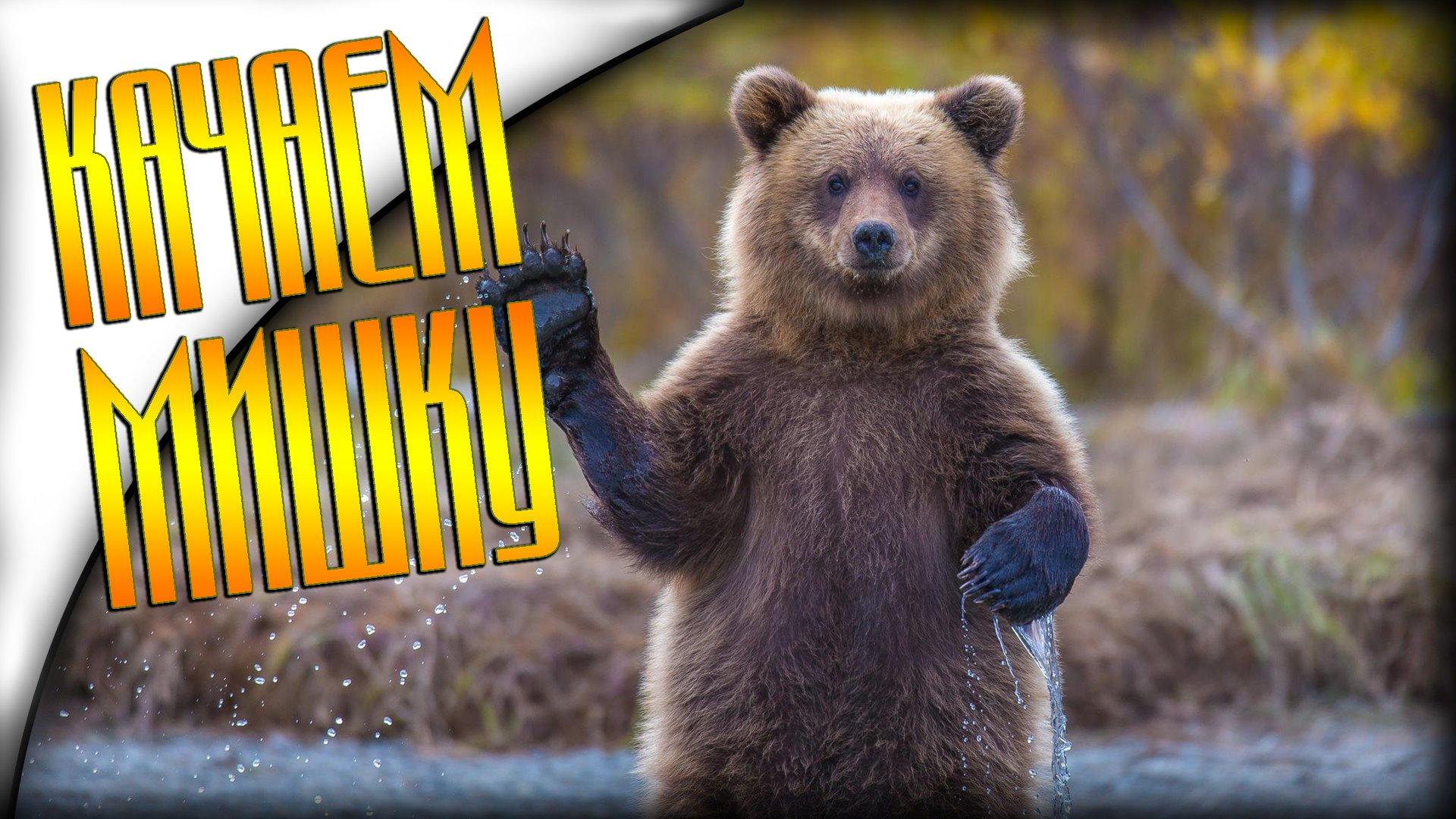 Качаем Мишку в Bear Simulator - Изображение 1