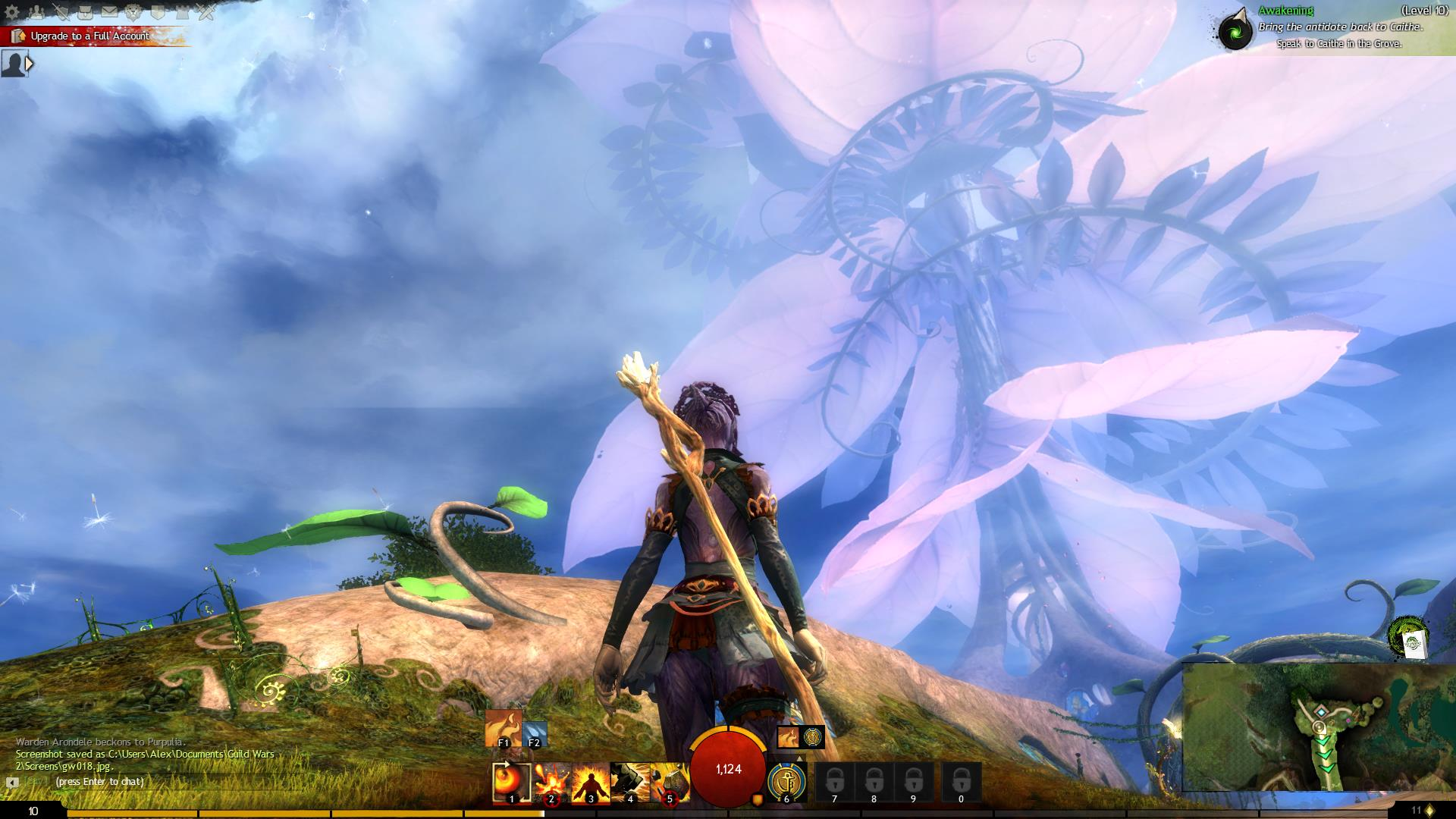 Путешествие по Guild Wars 2 ... Знакомство - Изображение 18