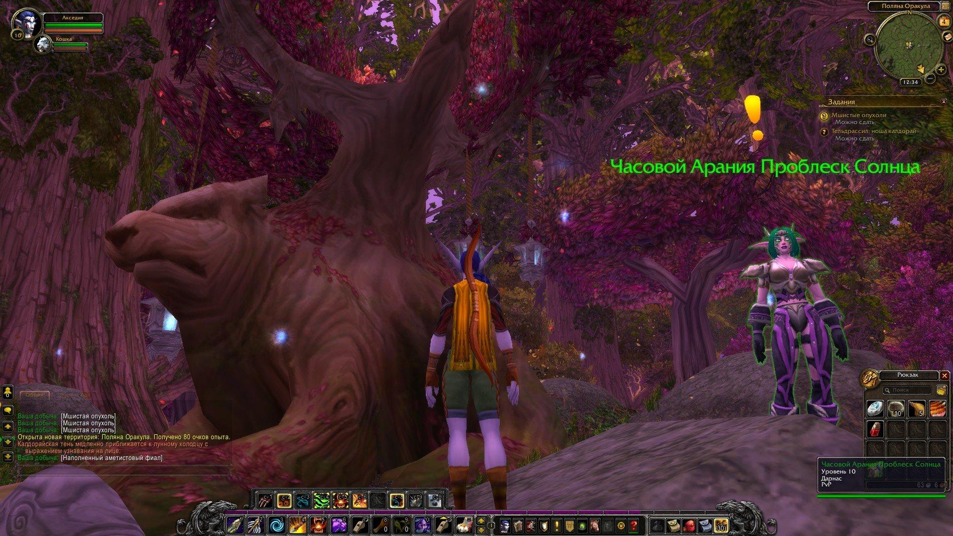 Путешествие по World of Warcraft ... Ночной Эльф. Глава 1 - Изображение 5