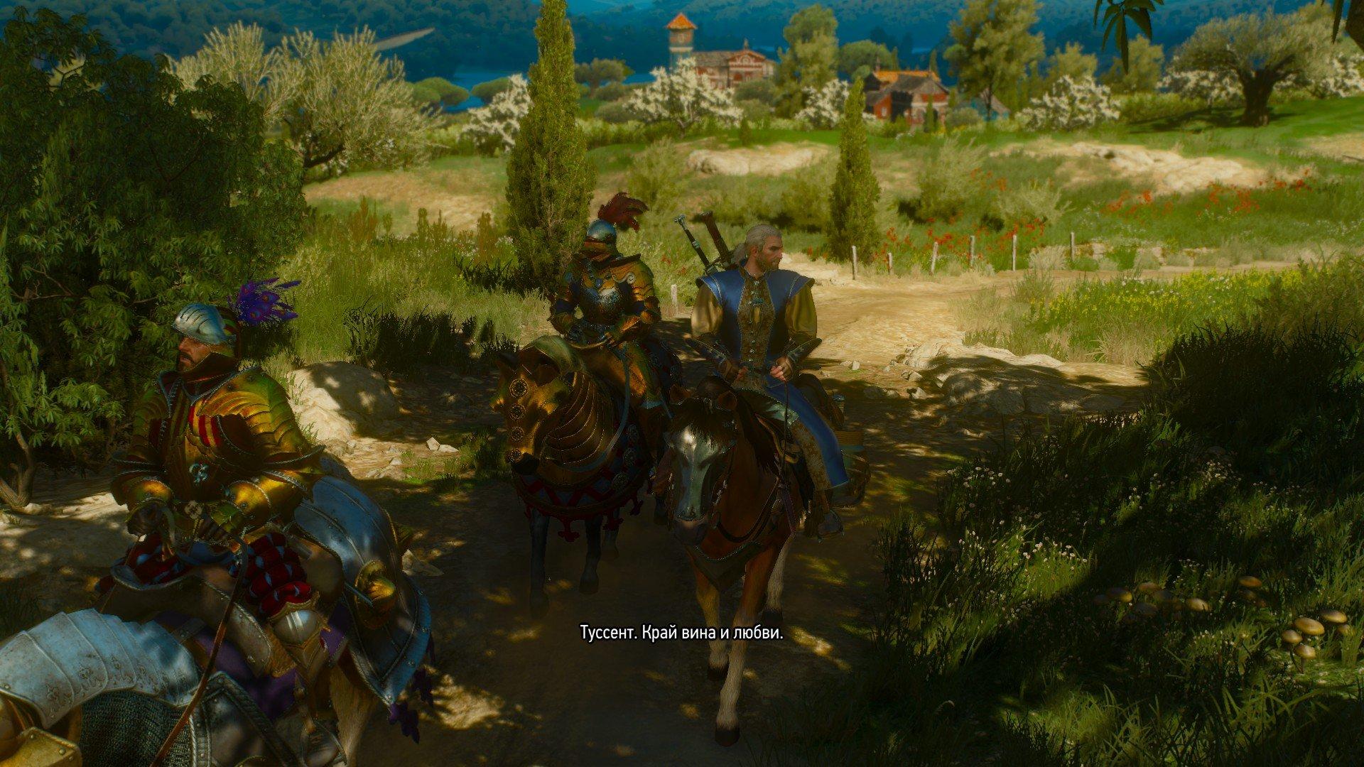 Вопль-прохождение Witcher 3: Кровь и Вино ... НАЧАЛО [ВНИМАНИЕ, ВОЗМОЖНЫ СПОЙЛЕРЫ] - Изображение 7