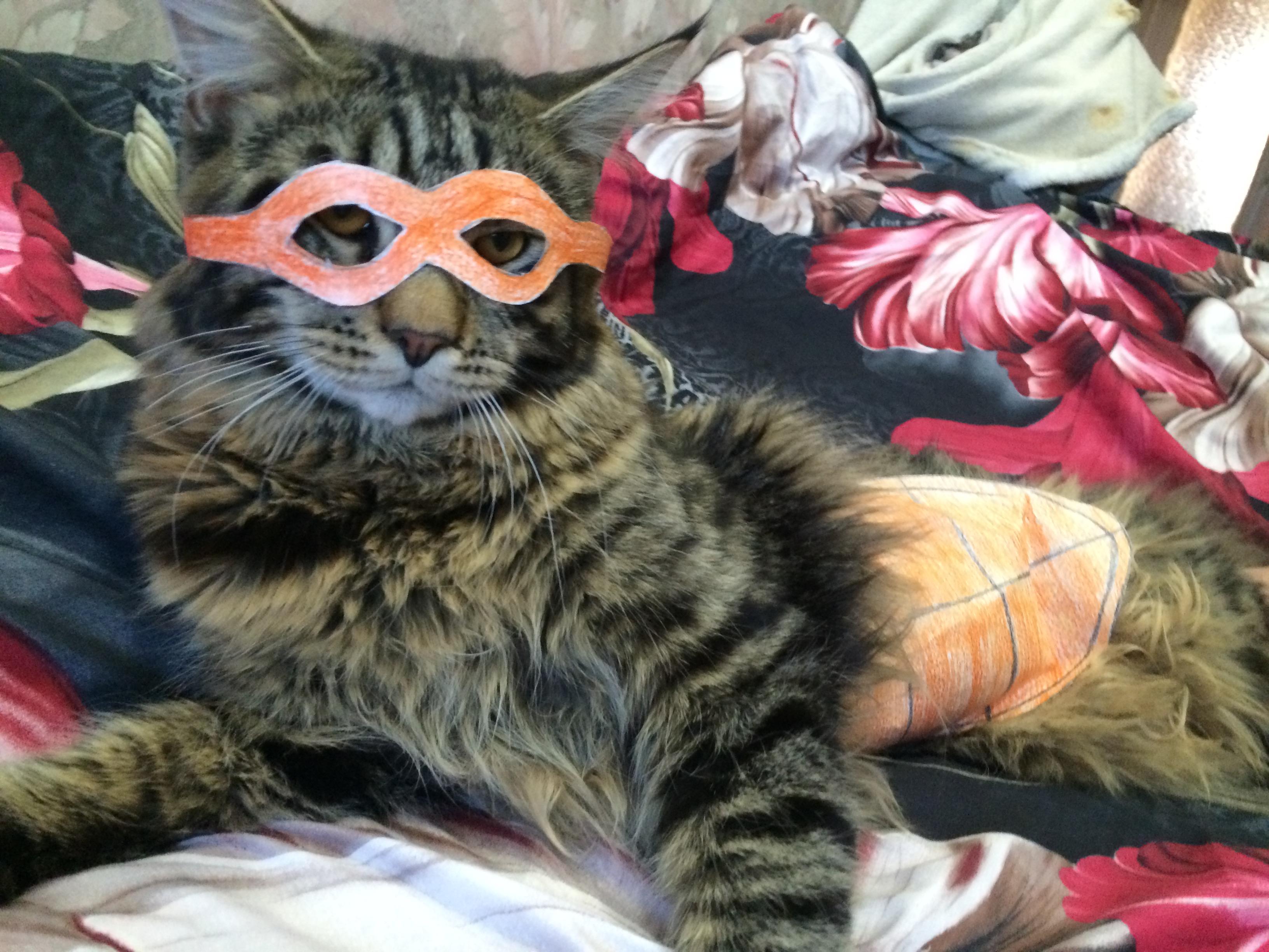#TMNT_cosplay - Изображение 1