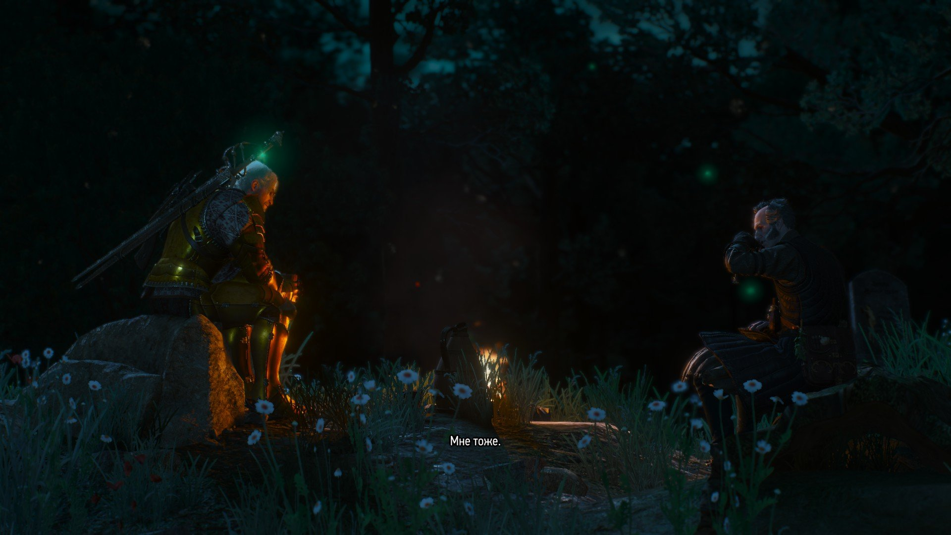 Вопль-прохождение Witcher 3: Кровь и Вино ... ФИНАЛ!!! [ВНИМАНИЕ, СПОЙЛЕРЫ] - Изображение 36