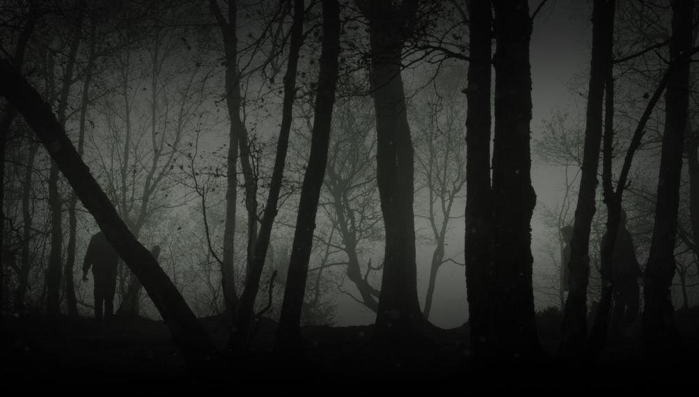 Релиз DayZ Standalone в Steam   DayZ Standalone Alpha появилась в Раннем доступе Steam. Стоит она 999 руб. Остается  ... - Изображение 1