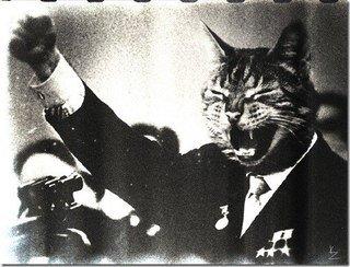 Добрый вечер, котаны! - Изображение 1
