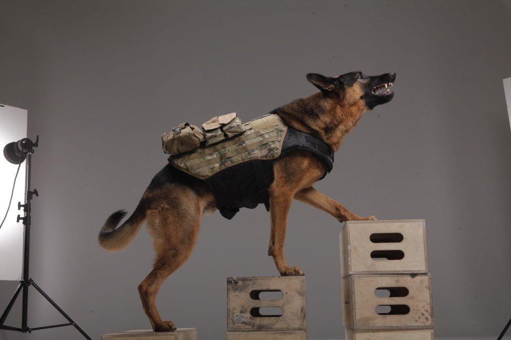 ^__________^ Call of Duty: Ghosts - Изображение 2