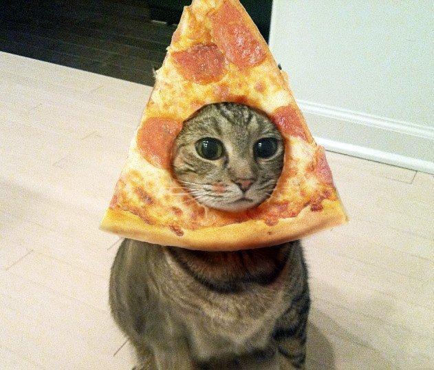 Хочу пиццу. Может, кто-нибудь подарит? - Изображение 1
