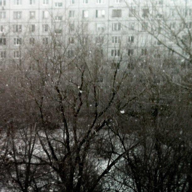 """Вчера внашем городе (Тольятти, Самарская область) было +10, сегодня пошёл снег. """"Ну и что?"""" скажете Вы? Ну и ничего... - Изображение 1"""