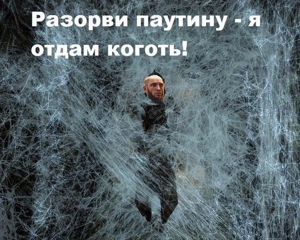 #TES #Skyrim #Ложь #ЖизньИгры научили меня не доверять людям =) - Изображение 1