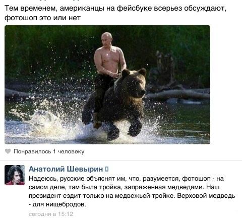 """""""Еду на медведе"""" - . - Изображение 1"""