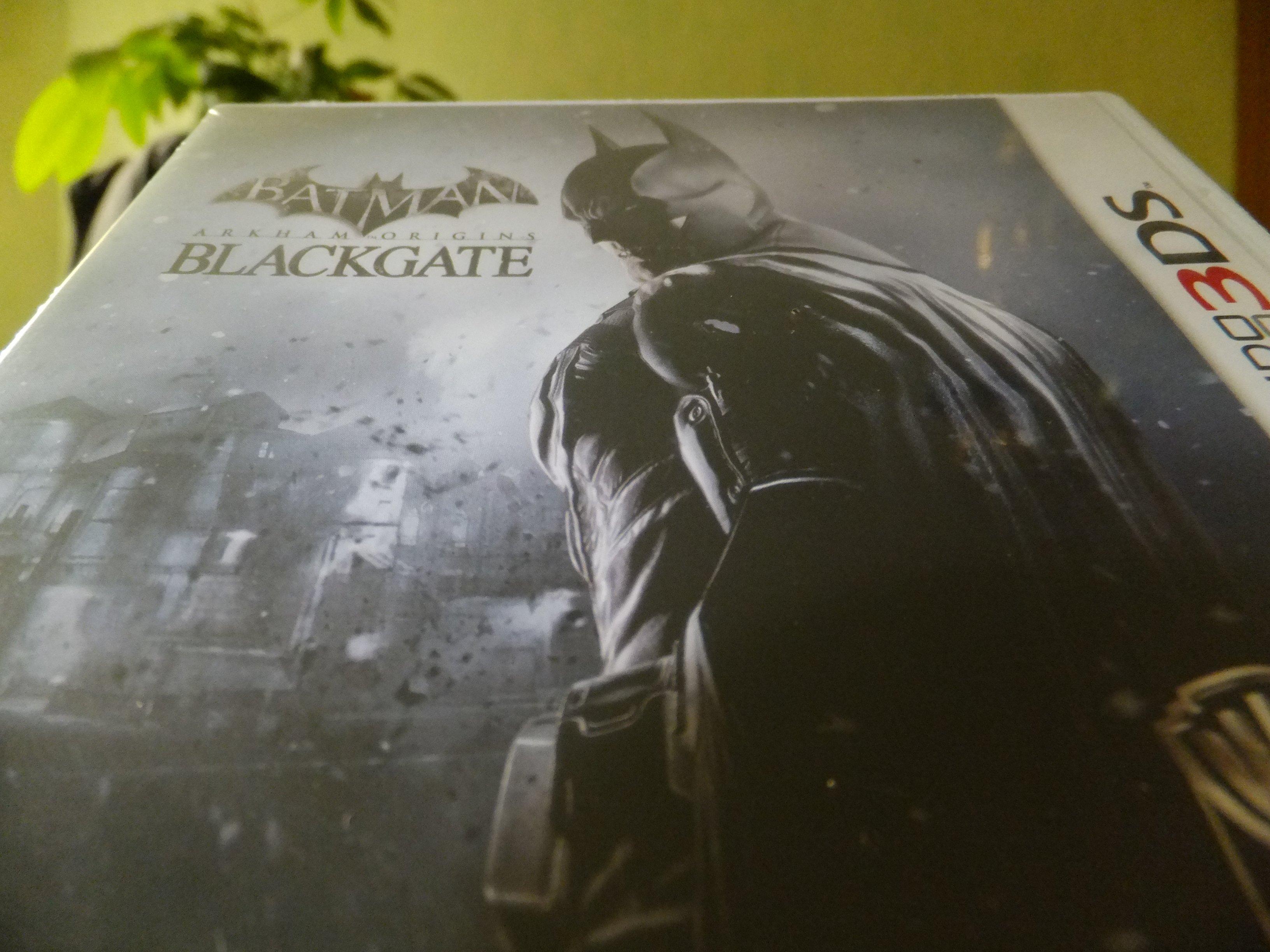 Бэтманец приехал таки. - Изображение 1