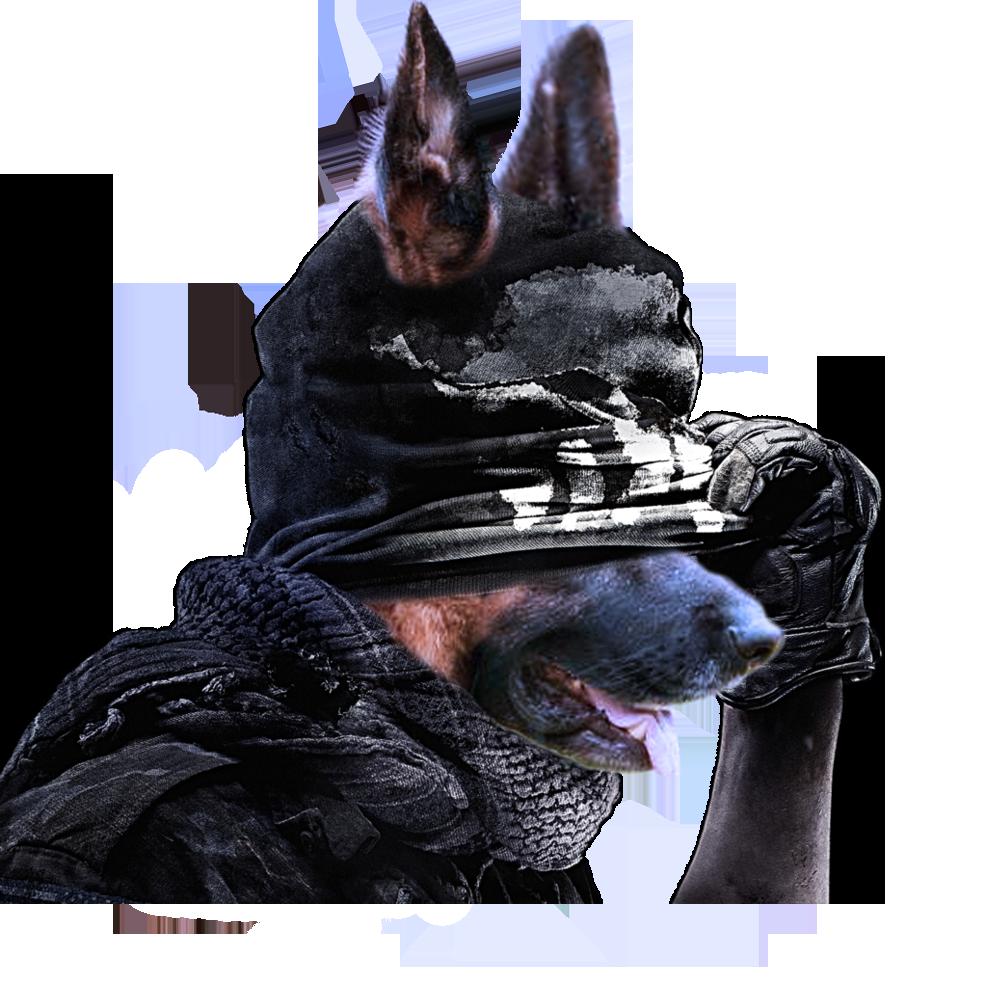 Самый главный поворот Call of Duty: Ghosts - Изображение 1
