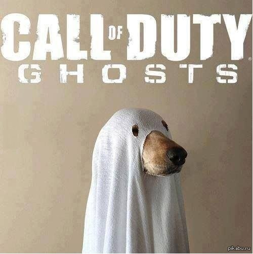 Call of Duty: Ghosts #dogswat - Изображение 1