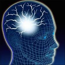 Мозг записывает и хранит информацию, значит должна быть возможность ее оттуда считать или переписать, ведь так?:) - Изображение 1