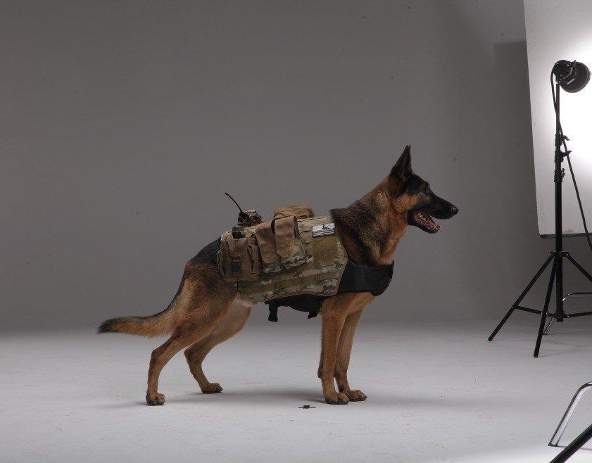 ^__________^ Call of Duty: Ghosts - Изображение 1