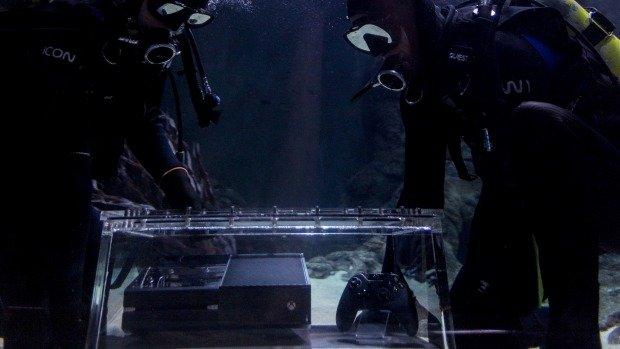 Как сообщает издание Stuff, двадцать акул океанариума Kelly Tarlton's Sea Life Aquarium в Окленде, Новая Зеландия, ... - Изображение 1