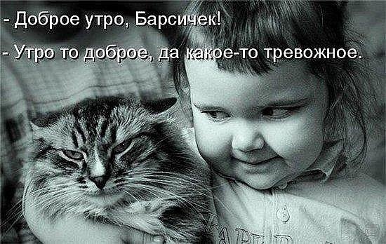 С добрым утром,народ...!...) - Изображение 1