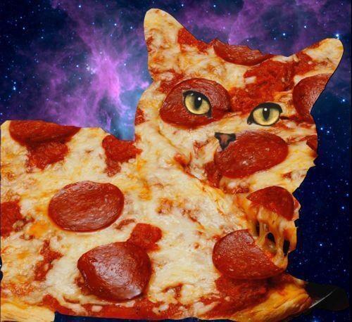 #pizzaspacecat - Изображение 1