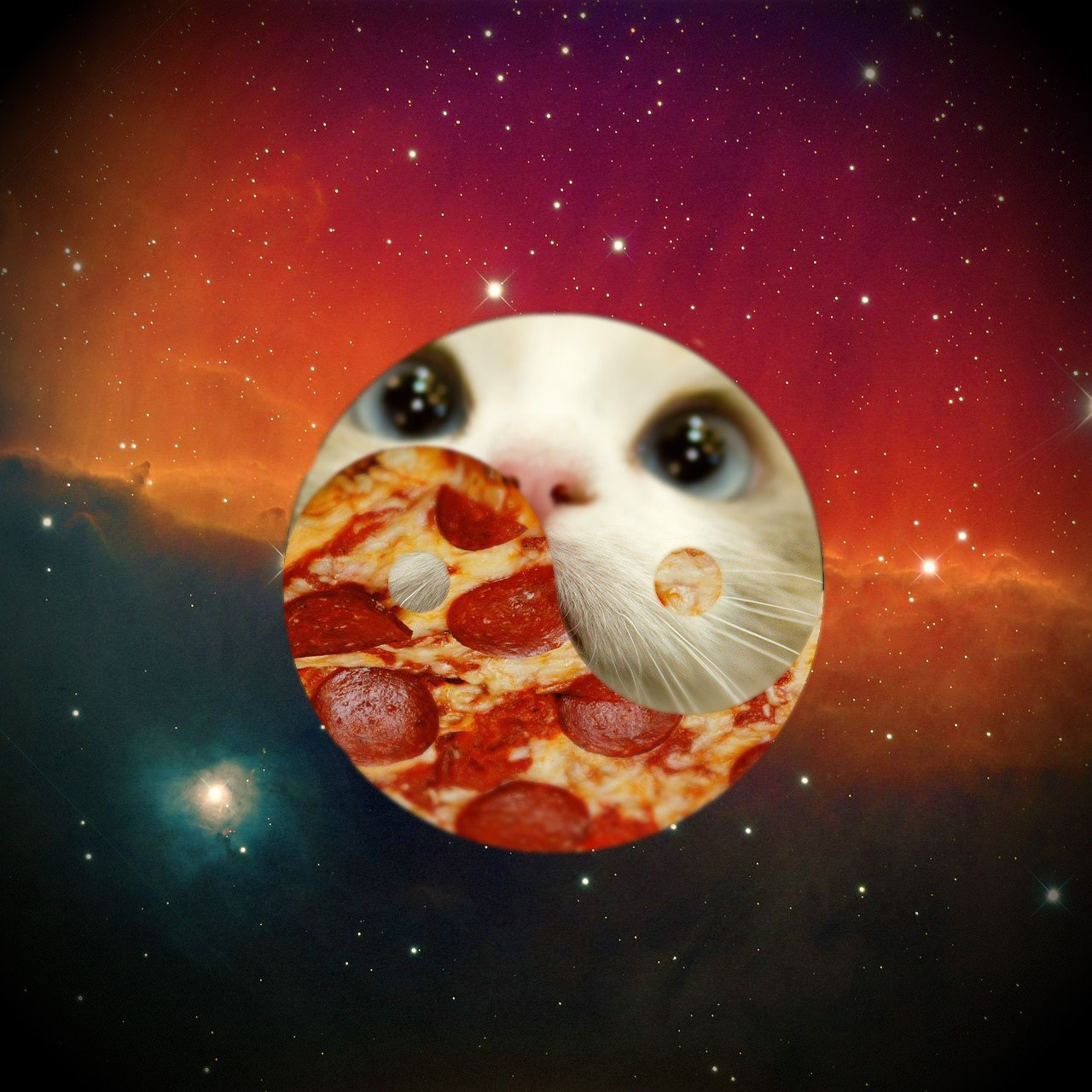 #pizzaspacecat #мастерфотошопа - Изображение 1