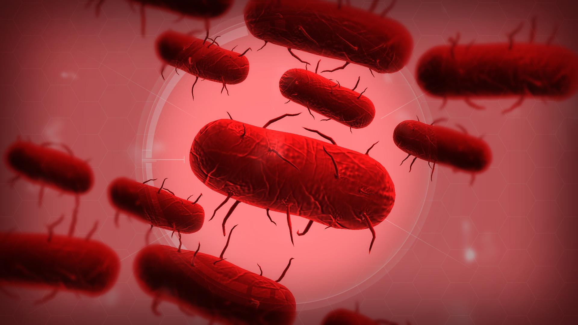 Китайский коронавирус привлек внимание игроков к Plague Inc: Evolved. Она уже в чартах AppStore