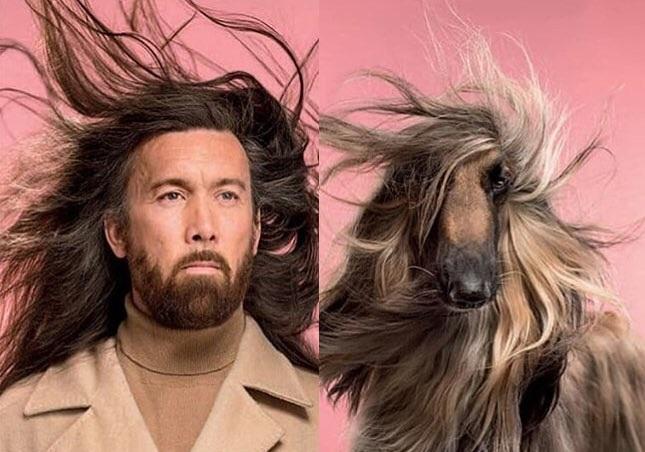Фотограф делает снимки людей исобак, которые выглядят как двойники
