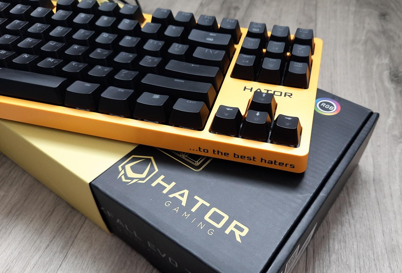 Обзор клавиатуры Hator Rockfall EVO TKL. Бюджетная оптическая клавиатура