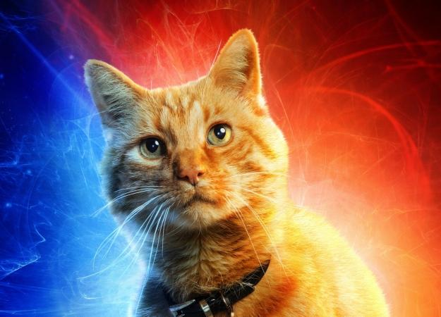 Нановых постерах фильма «Капитан Марвел» представили основных персонажей вовсей красе