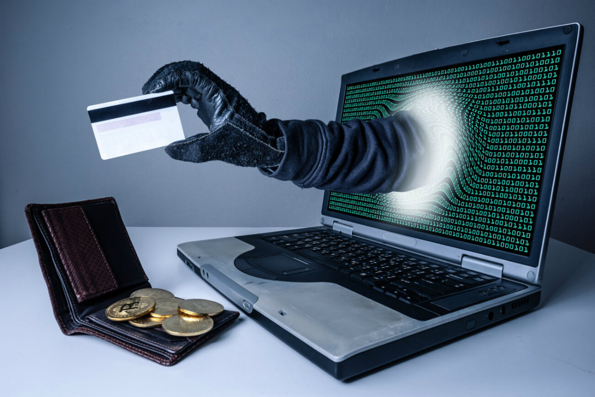 ВРоссии накарантине установлен рекорд случаев мошенничества в интернете