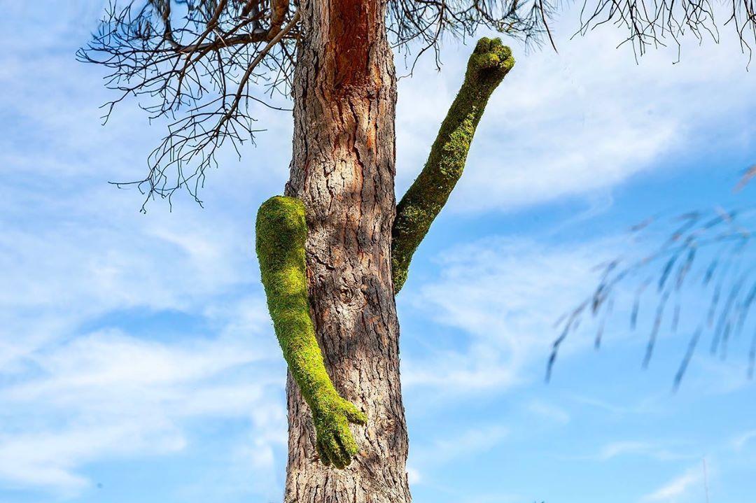 Художник объединяет предметы срастениями. Получаются крутые инсталляции