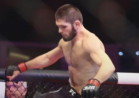 Хабиб будет драться: UFC не планирует отменять бой Нурмагомедова и Фергюсона