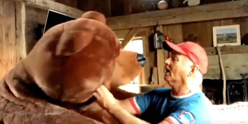 Билл Мюррей спел бейсбольный гимн вместе согромным плюшевым медведем