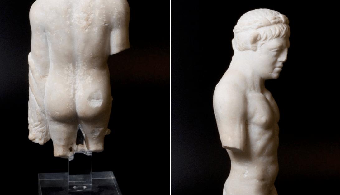 Музеи повсему миру выясняют, учьих экспонатов самая лучшая попа