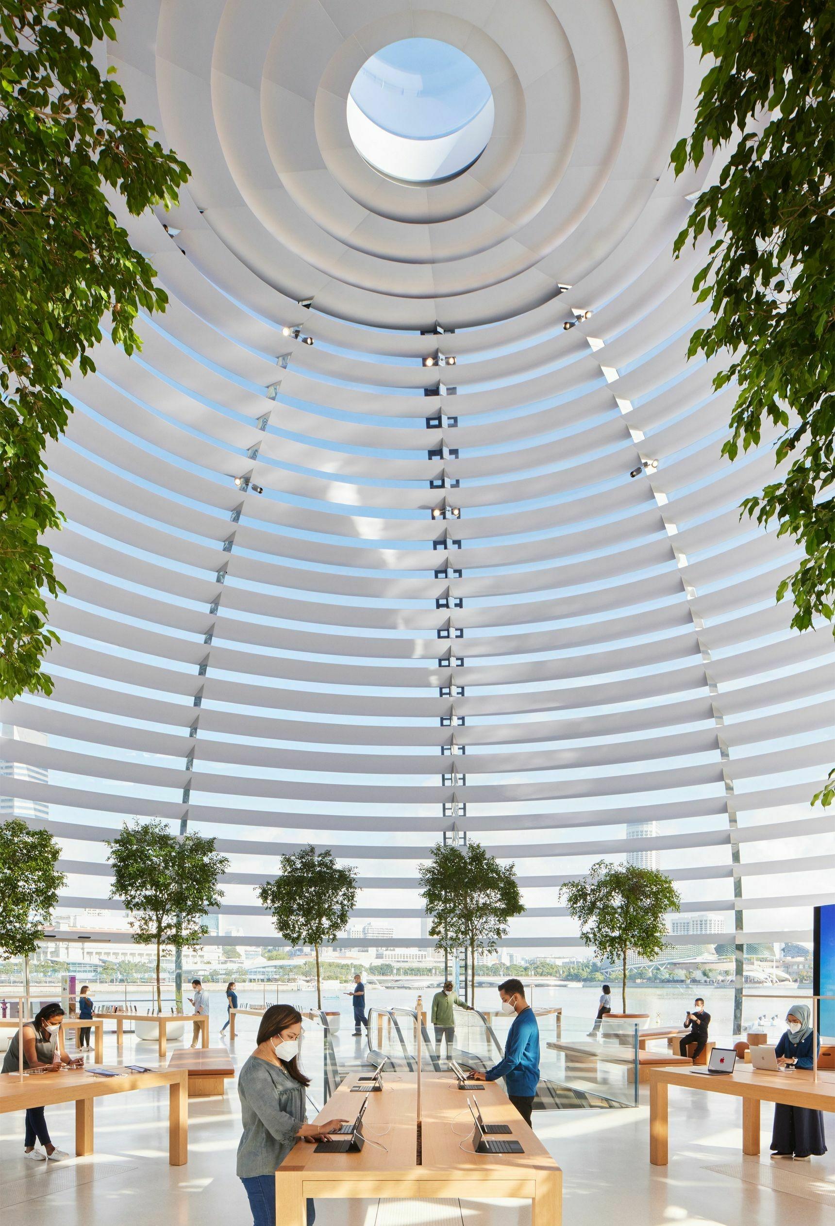 Apple показала изнутри свой плавающий магазин-шар Marina Bay Sands   Канобу - Изображение 6866