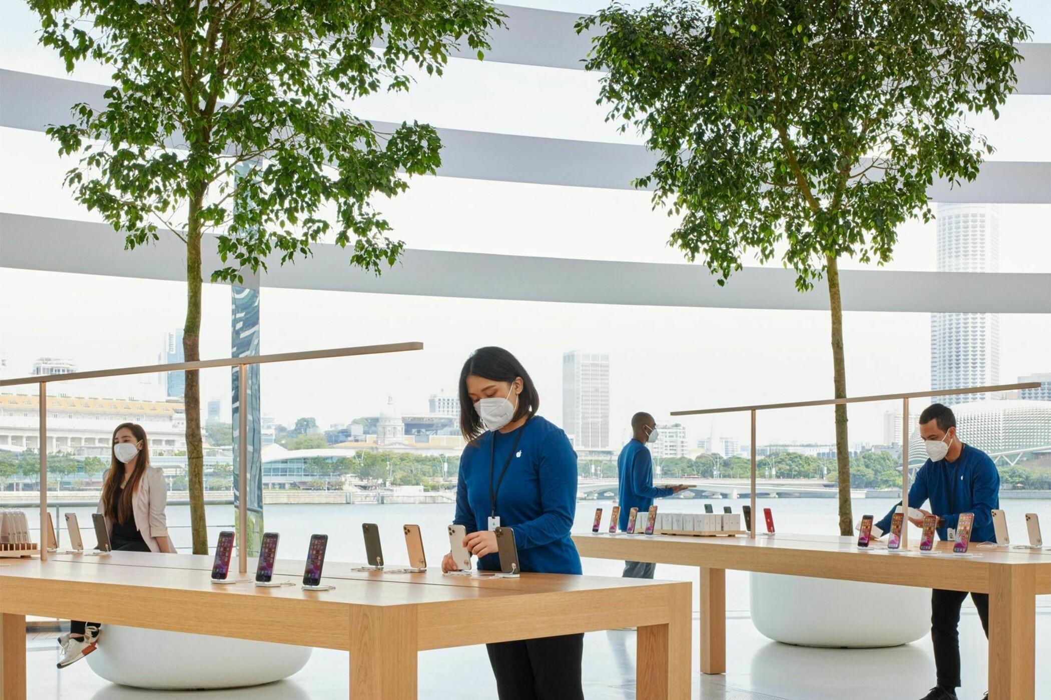Apple показала изнутри свой плавающий магазин-шар Marina Bay Sands   Канобу - Изображение 6868