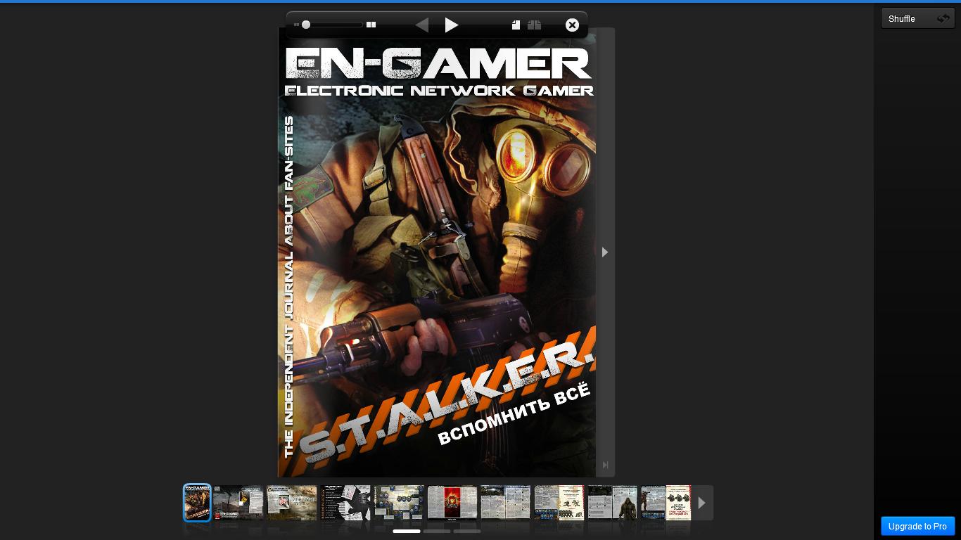 Electronic Network Gamer - Группа людей, которая занялась оценкой игровых фан-сайтов, а так же написанием разных ста .... - Изображение 1