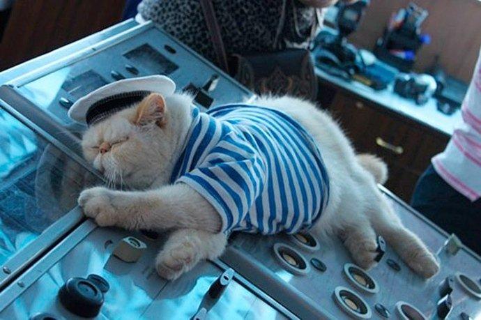 Темные страницы игровой индустрии. Часть 7. What will we do with a drunken sailor?. - Изображение 3