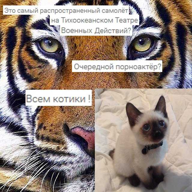instagram: the next generation #2. (Канобу комментирует инстаграм). - Изображение 9