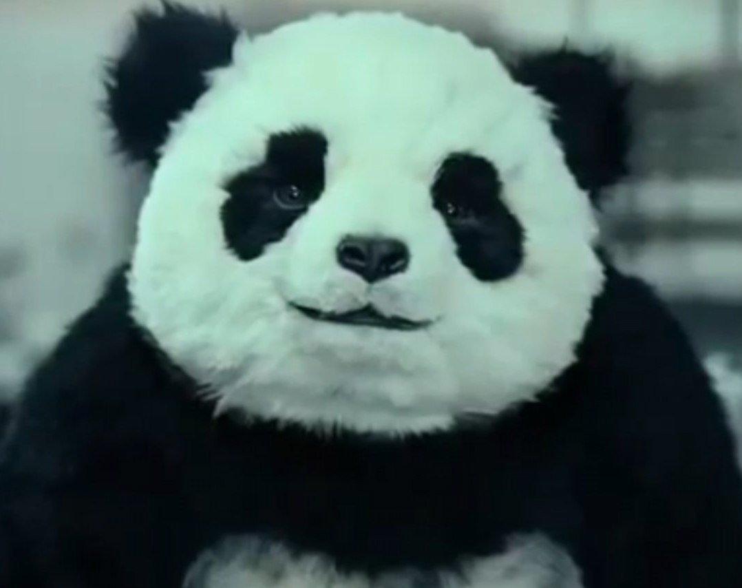 Спасем панду. - Изображение 1
