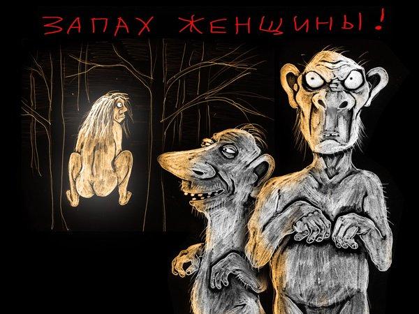 КОЛХУИ. - Изображение 15