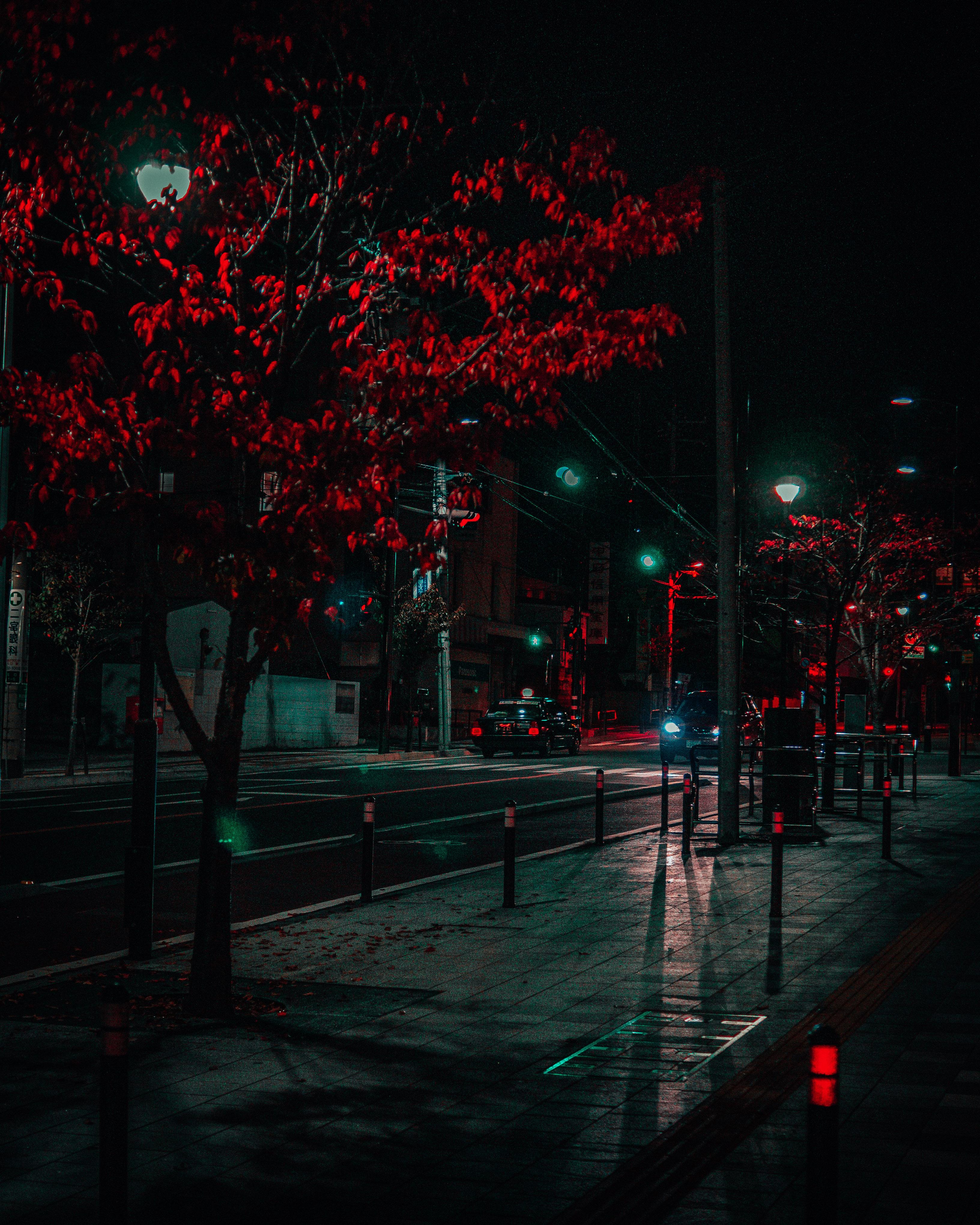 Ночные огни. - Изображение 13