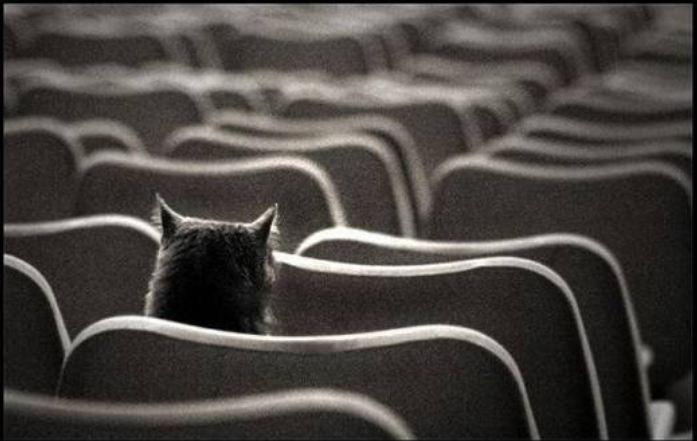 """Конкурс """"Одиночество в сети"""". - Изображение 1"""