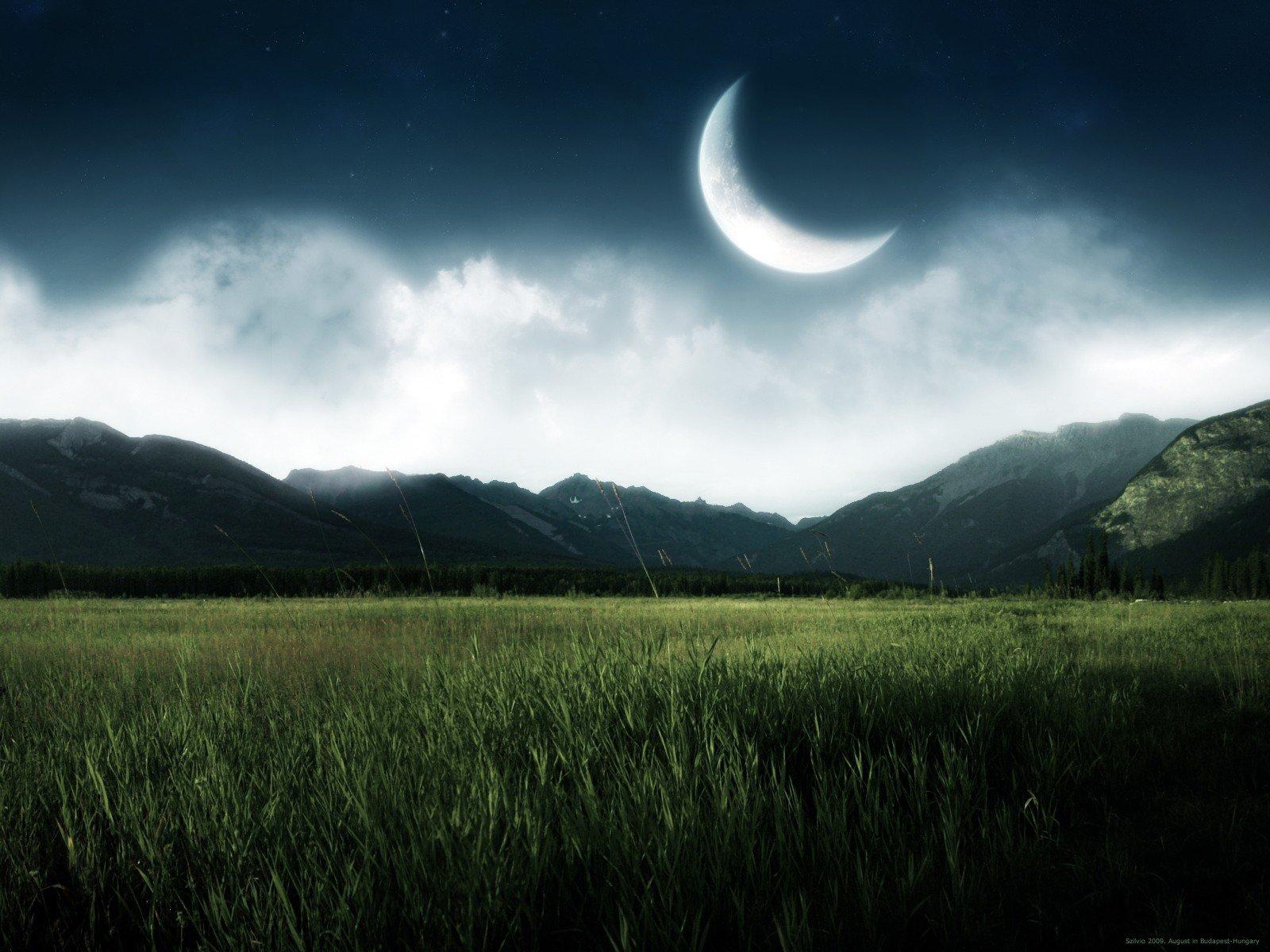 Раньше Канобу по ночам был живее, заявляю со всей ответственностью, как часто засиживающийся по ночам.. - Изображение 1